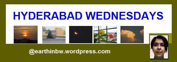 hyderabad wednesdays logo