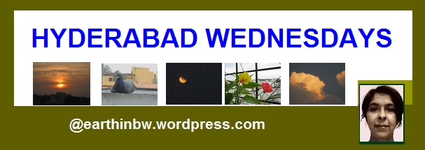 hyderabad wednesdays logo