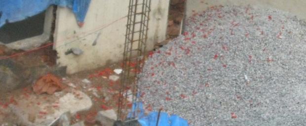 krishnachura petals on pebbles IMG_0011 17.6.15